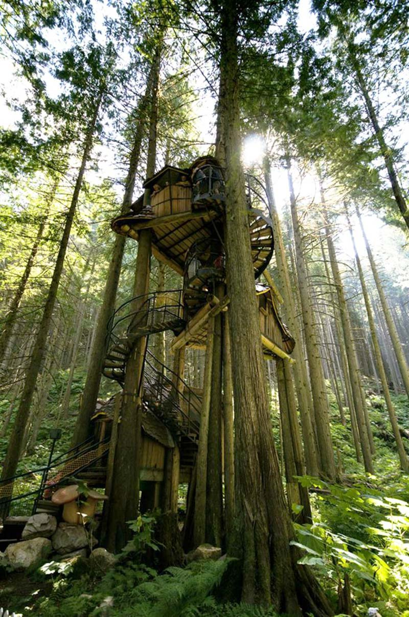 immagine-12Three-Story-Treehouse-(British-Columbia,-Canada)